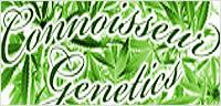 Cannaseur Seeds