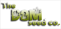 The Dam Seed Co Seeds