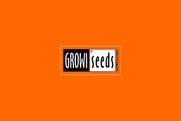Growi Seeds