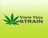 Grape Fruit Marijuana Seeds