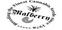 Malberry