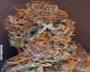 Rare Dankness marijuana seeds
