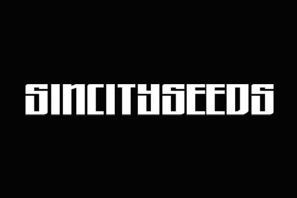 Sin-City-Seeds