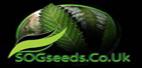 sog seeds