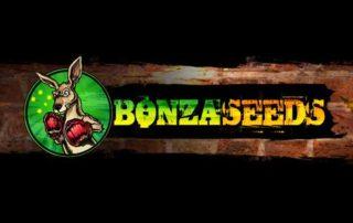 Bonza-Seeds