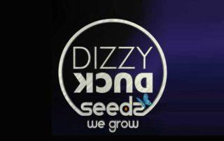 Dizzy-Duck-Seeds