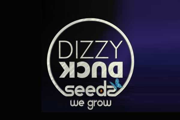 Dizzy-Duck-Seeds